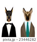 タキシードを着たドーベルマンとスーツを着たジャーマンシェパード 23446282