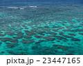 海 珊瑚礁 宮古島の写真 23447165