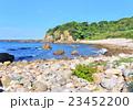 足摺岬アロウド浜-37458 23452200