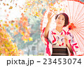 女性 着物 紅葉の写真 23453074