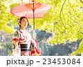 着物を着た女性 紅葉イメージ 23453084
