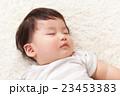 すやすや寝る赤ちゃん 23453383