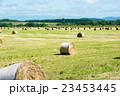 牧草ロール 23453445