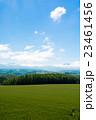 緑のムギ畑と夏空 23461456