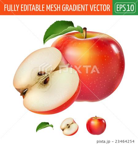Red apple on white background. Vector illustration 23464254