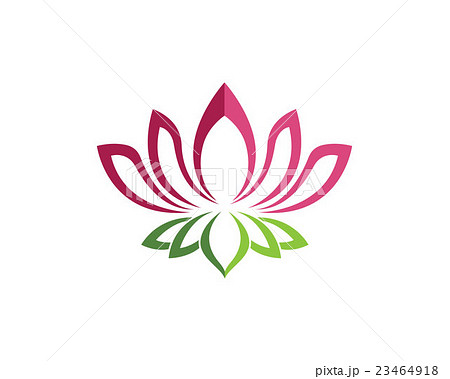 beauty vector lotus flowers design logo templateのイラスト素材