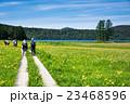 尾瀬 大江湿原 風景の写真 23468596