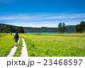 尾瀬 大江湿原 風景の写真 23468597