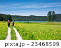 尾瀬 大江湿原 風景の写真 23468599