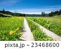 尾瀬 大江湿原 風景の写真 23468600
