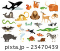 Set of cute cartoon animals, snakes, birds, fishes 23470439