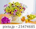 カラフルな菊の花と秋の味覚 23474685