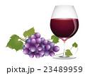 ワイングラス 23489959