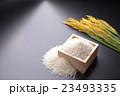 米 こしひかり(魚沼産) 23493335