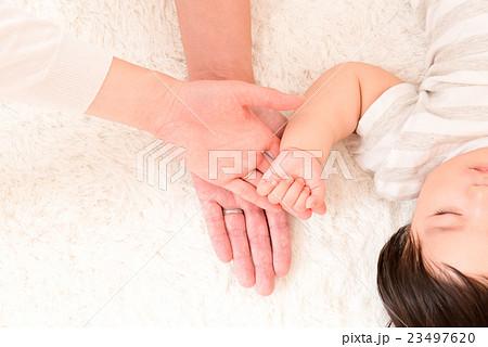 赤ちゃん、パパ、ママの手 23497620