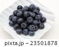 ブルーベリー フルーツ 木の実の写真 23501878