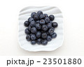 ブルーベリー フルーツ 木の実の写真 23501880