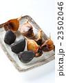 黒ニンニク 23502046