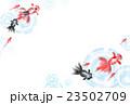金魚 魚 淡水魚のイラスト 23502709