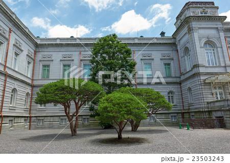 迎賓館赤坂離宮西側の樹木、松の木 23503243