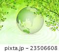 新緑(若葉) 23506608