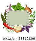 ベジタブル 野菜 玉葱のイラスト 23512809