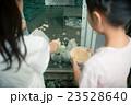 primary school child 23528640