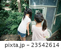 primary school child 23542614