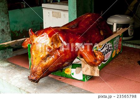 ベトナムの子豚の丸焼き(炙り焼き) 23565798