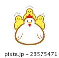 ちょっとシュールな鶏とヒヨコのイラスト 23575471
