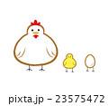 ちょっとシュールな鶏とヒヨコのイラスト 23575472