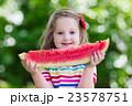 Little girl eating watermelon in the garden 23578751