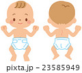 赤ちゃんの体 23585949