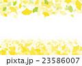 イチョウ 紅葉 葉のイラスト 23586007