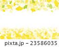 紅葉 イチョウ 葉のイラスト 23586035