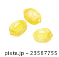 檸檬 レモン 23587755