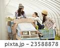 農業女子 仕事風景 23588878