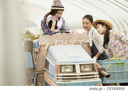 農業女子 仕事風景 23588900