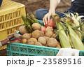 農業 手元 23589516
