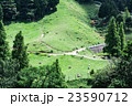 六甲山牧場 羊 牧場の写真 23590712