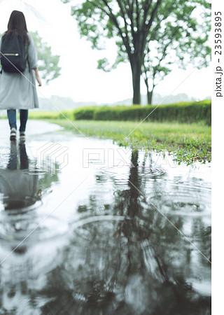 雨 23593895