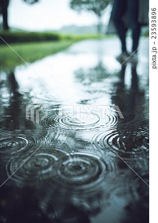 雨 23593896