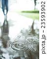 雨 23593902