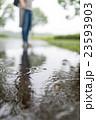 雨 水溜まり 波紋の写真 23593903