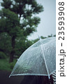 雨 傘 雨傘の写真 23593908