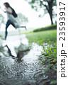 雨 23593917