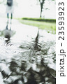 雨 水溜まり 公園の写真 23593923