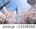 東京・桜の名所 23596368