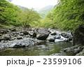 早戸川 川 河川の写真 23599106