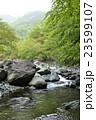 丹沢 早戸川 河川の写真 23599107
